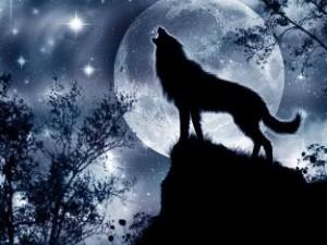 культ волка бронзового века
