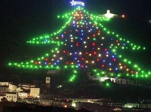 самая большая и необычная елка в мире