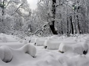 Киев до субботы накроет снежная завеса