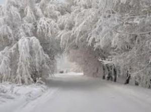 зима и снег