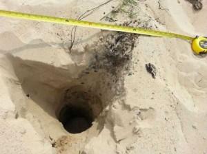 Ученые назвали внезапно разверзающуюся дюну новым феноменом