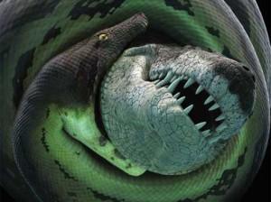 Обнаружены останки крокодила, 60 млн лет назад сражавшегося с 18-метровой змеей-монстром