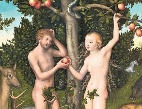Генетик зашифрует в ДНК яблока информацию из Википедии