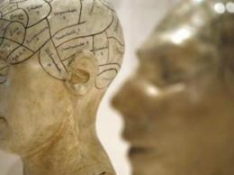 Шизофрения – это восемь различных болезней?