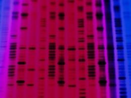 Ученые выделили гены, отвечающие за аутизм