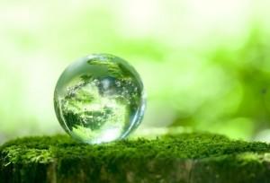 планета зеленеет