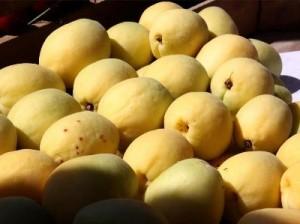 Армянские абрикосы