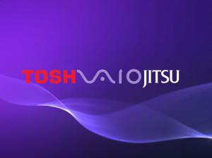 Toshiba Vaio Fujitsu