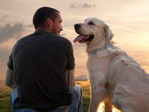 он и собака