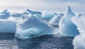 Во льдах