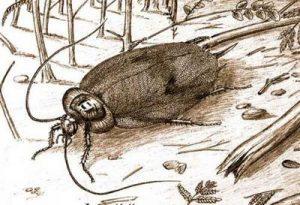 Древние тараканы