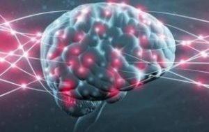 мозг суперкомпьютер