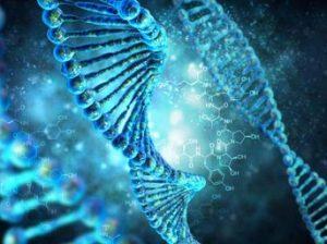 биогенетика