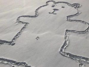 нарисованный медведь