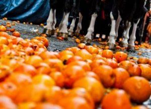 битва апельсинами