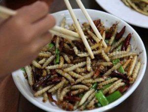 еда из насекомых