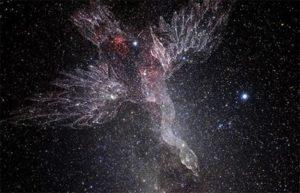 созвездие Лебедя